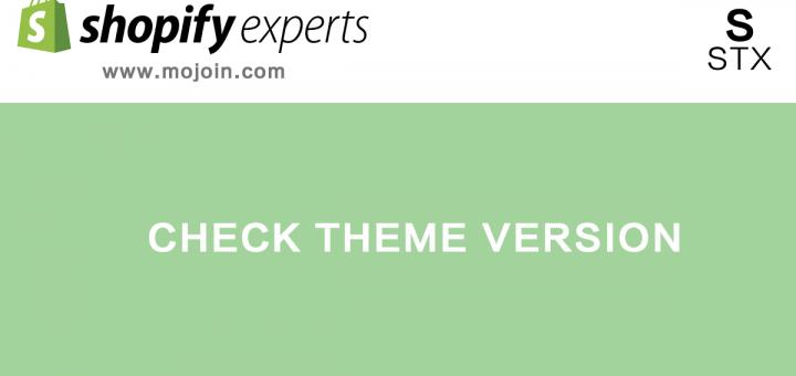 shopify check theme version